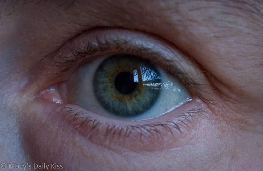Close up shot of a green eye