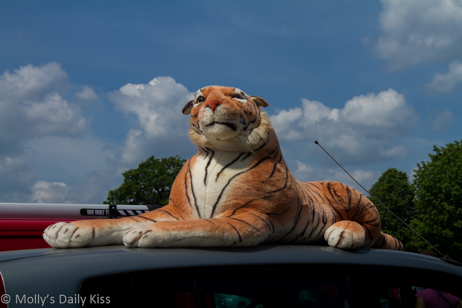large soft toy tigger for post about teddy bear kink Plushophilia