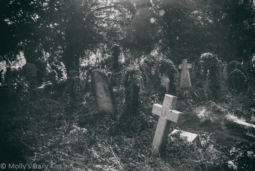 Gravewyard oxfore for post about Graveyard and cemetery kink